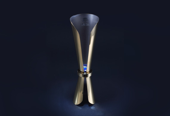 <h2>TATA Business Excellence Trophy<h2>